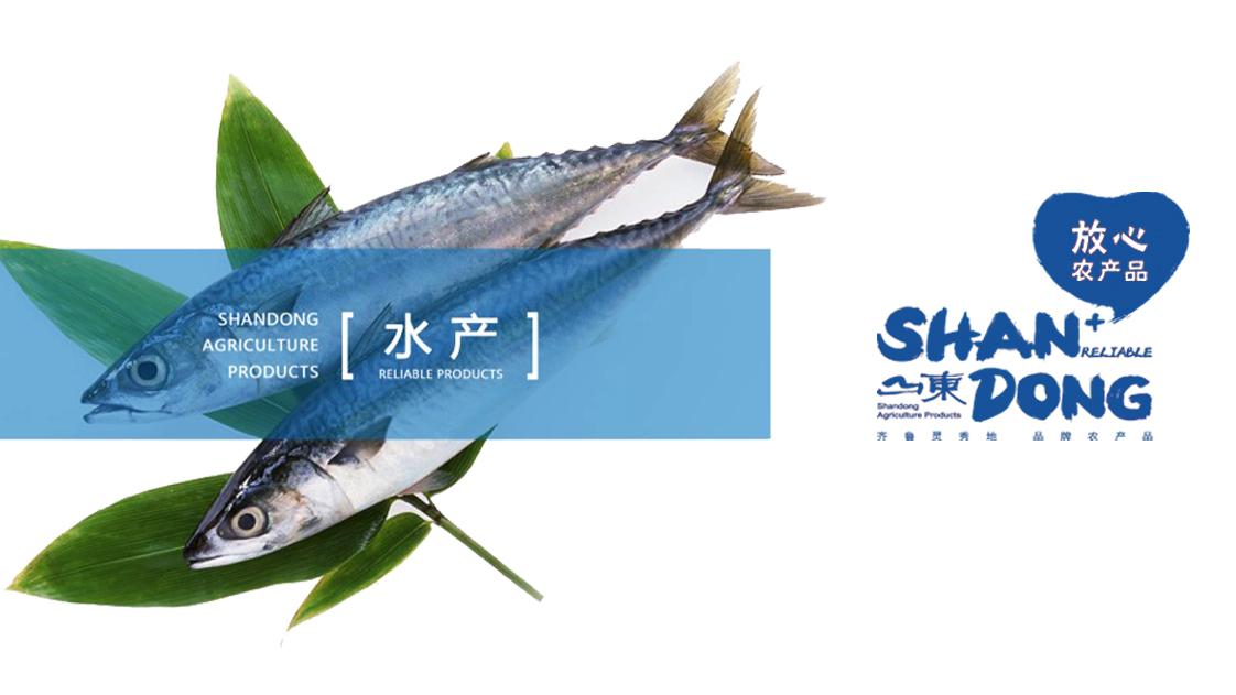 山东农产品区域ld乐动体育 主页品牌